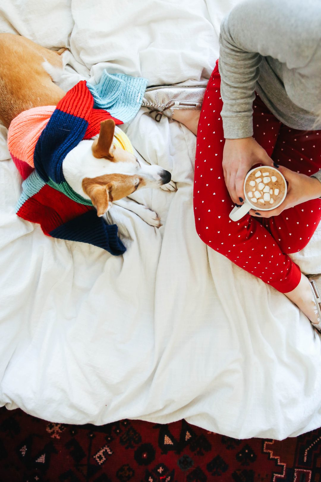 Getting Cozy for the Holidays.